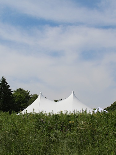 Wedding Tent on the 1780 Farmhouse south lawn, from the meadow